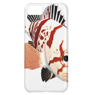 Tiger Rockfish iPhone 5C Cases