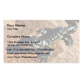 Tiger salamander Double-Sided standard business cards (Pack of 100)