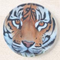 tiger sandstone coaster