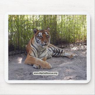 Tiger Sarmoti Mouse Pad