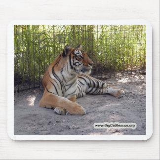 Tiger Sarmoti. Mouse Pad