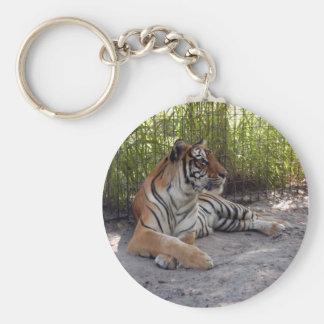 tiger-sermonti-001 keychain
