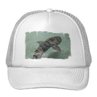 Tiger Shark Baseball Hat