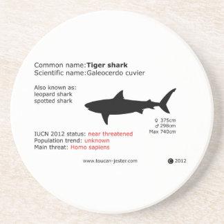 Tiger shark coaster