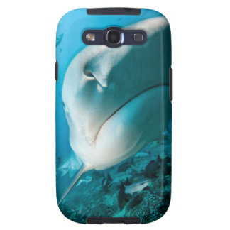 Tiger shark (Galeocerdo cuvier) Shark feed Samsung Galaxy SIII Case