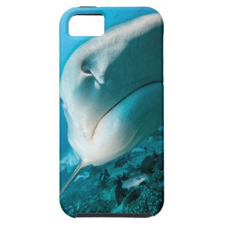 Tiger shark (Galeocerdo cuvier) Shark feed iPhone SE/5/5s Case