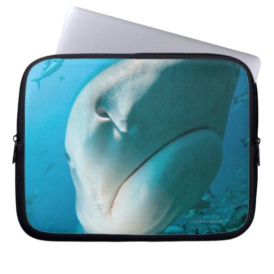 Tiger shark (Galeocerdo cuvier) Shark feed Laptop Sleeve
