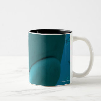 Tiger shark (Galeocerdo cuvier) Shark feed Two-Tone Coffee Mug
