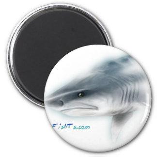 Tiger Shark Head 2 Inch Round Magnet