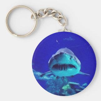 Tiger Shark Key Chain