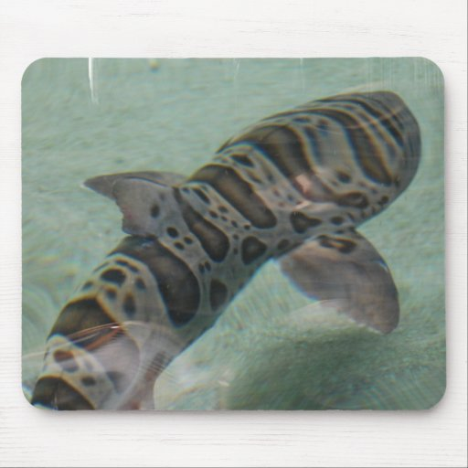 Tiger Shark Mouse Pad