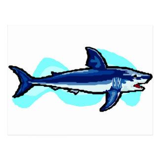 tiger shark postcard