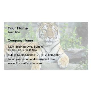 Tiger, Siberian Business Card