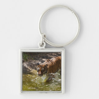 Tiger Silver-Colored Square Keychain