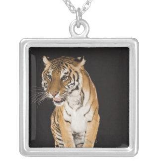 Tiger sitting on platform 2 silver plated necklace