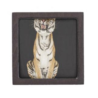 Tiger sitting on platform jewelry box