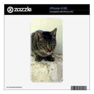 Tiger Six Toe iPhone 4S Skins