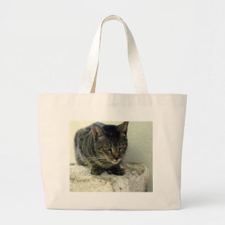 Tiger Six Toe Large Tote Bag