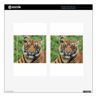 Tiger Decals For Kindle Fire