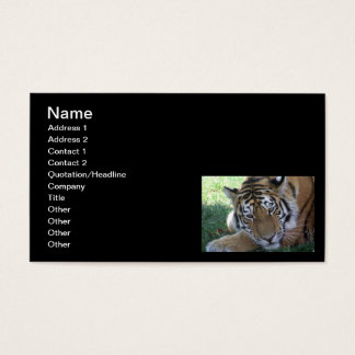 Tiger-sleeping-in-the-grass WILD ANIMALS BIG CATS Business Card
