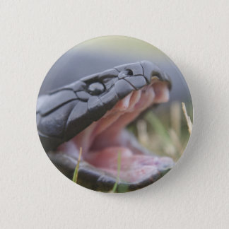 Tiger Snake Button