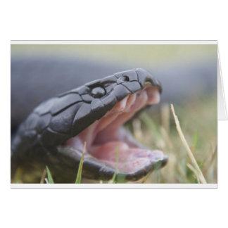 Tiger Snake Card