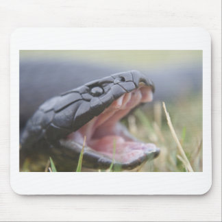 Tiger Snake Mouse Pad