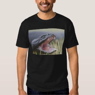Tiger Snake Tshirt
