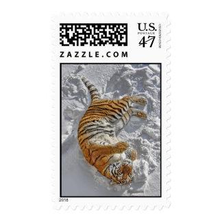 "Tiger ""Snow Angel"" Postage"