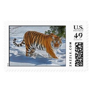 Tiger Snow Shadow Postage