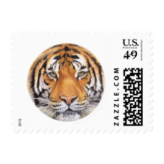 """""""Tiger Spot"""" on White, Watercolor Art Postage"""