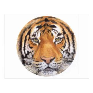 """""""Tiger Spot"""" on White, Watercolor Art Postcard"""