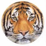 """""""Tiger Spot"""" Tiger Face Watercolor Art Photo Sculpture Ornament"""