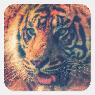 Tiger Spring Faux Wood Grunge Square Sticker