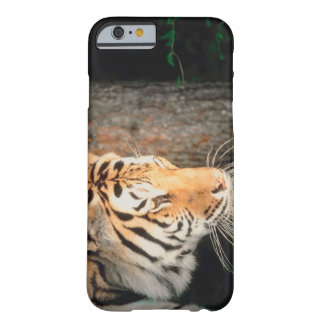 Tiger stalking barely there iPhone 6 case