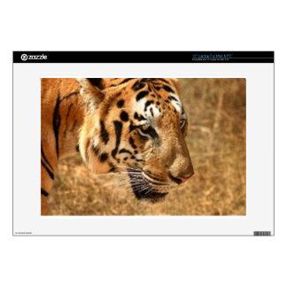 """Tiger Stalking in India 15"""" Laptop Skins"""