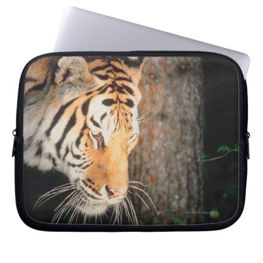 Tiger stalking laptop sleeve