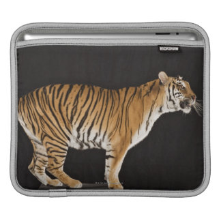 Tiger standing on platform sleeves for iPads