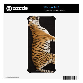 Tiger standing on platform iPhone 4S skin