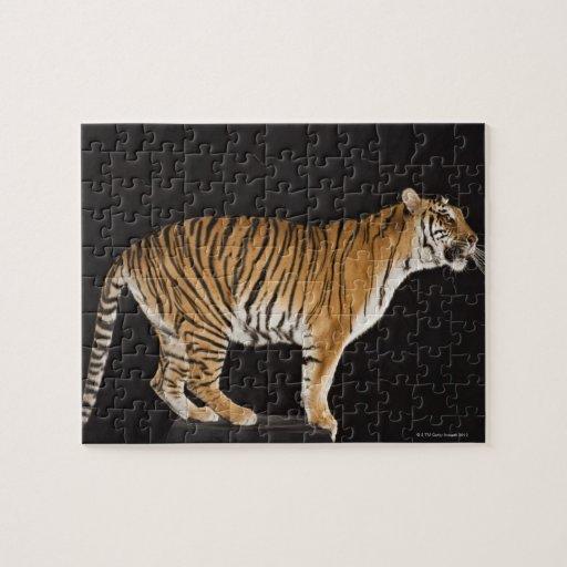 Tiger standing on platform puzzle