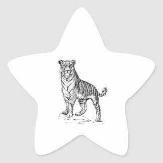 Tiger Star Sticker