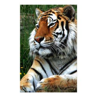 Tiger Custom Stationery