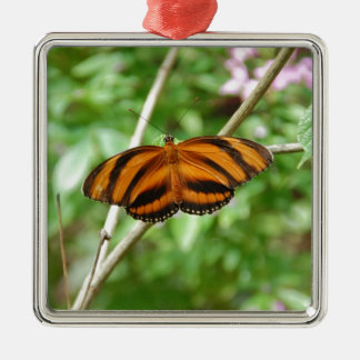 Tiger Stripe Butterfly Silver-Colored Square Decoration
