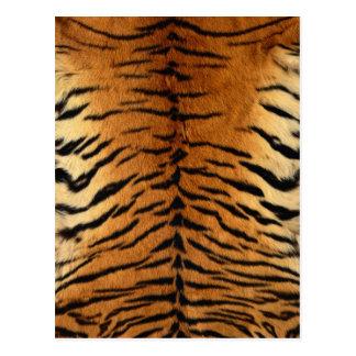Tiger Stripe Fur Print Postcard