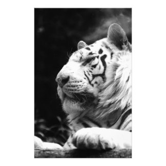 Tiger Stripes Pattern Wild  Animal Cat Destiny Personalized Stationery