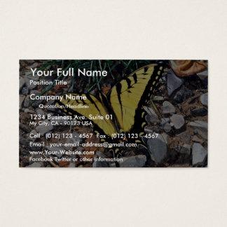 Tiger swallowtail business card