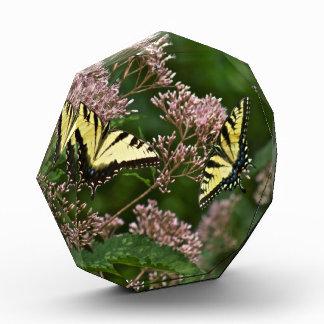 Tiger Swallowtail Butterflies on Joe Pye Weed Acrylic Award