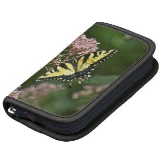 Tiger Swallowtail Butterflies on Joe Pye Weed Planner
