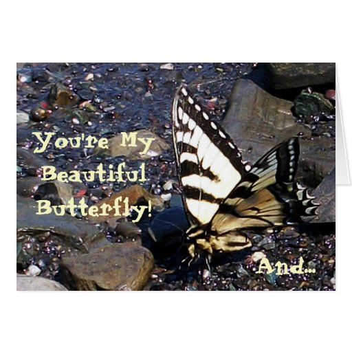 Tiger Swallowtail Butterfly 1 Greeting Card