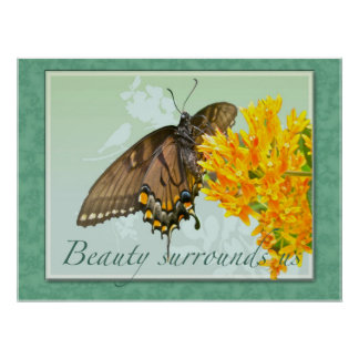 Tiger Swallowtail Butterfly Beauty Surrounds Us Poster